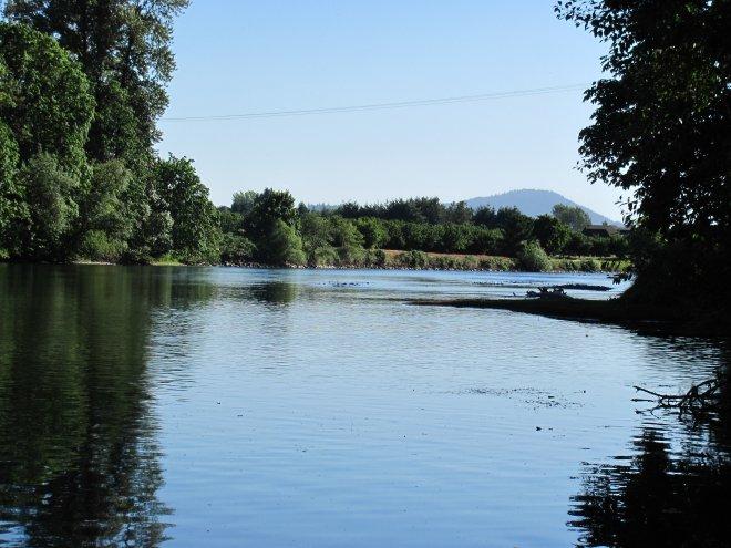 MeKenzie River from McKenzie View Drive.