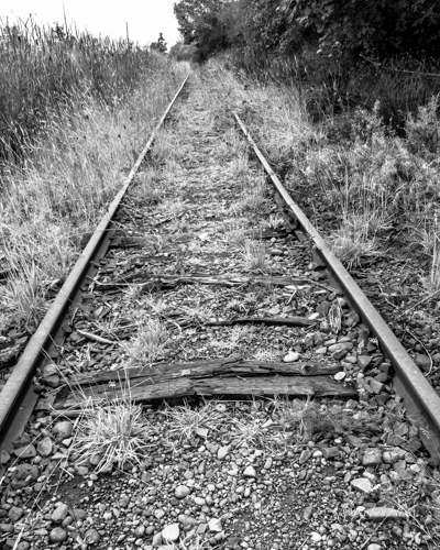 Old tracks remind us of a bygone age.  (c) Robyn Hine.  Used with permission.