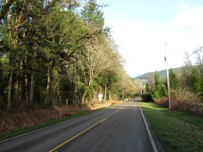 Picturesque Hill Road, Lane County Oregon.  About 10 miles from Springfield.