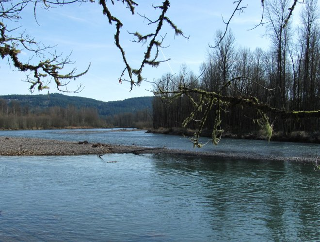 McKenzie River photo, Camp Creek, Lane County Oregon