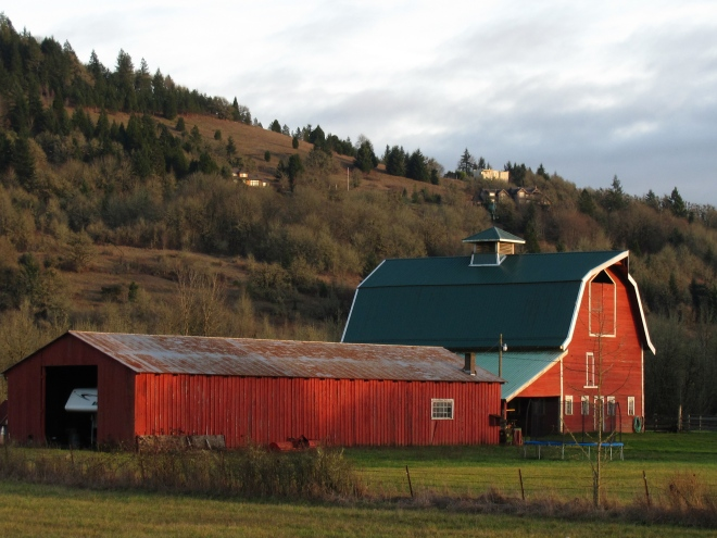 Real estate with working barns is also common in the Mohawk Valley, Lane County, Oregon.