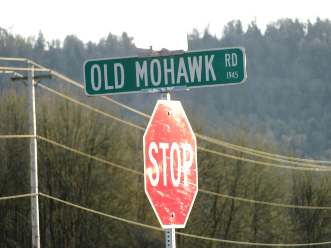 Where Old Mohawk meets Marcola Road.